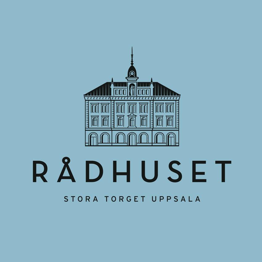 Radhuset_puff_848
